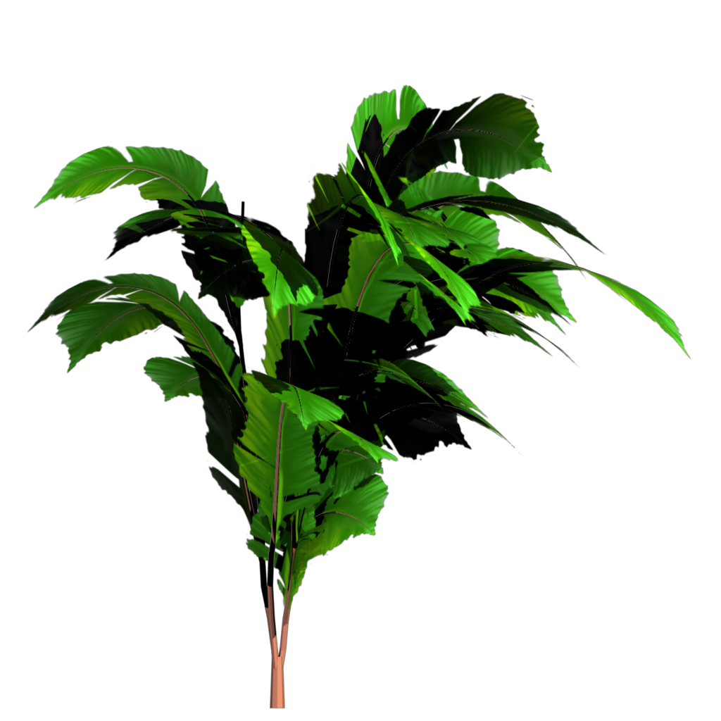 Banana Tree Plant Png