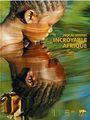 Incroyable Afrique Pascal maitre.jpg