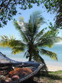 Bateau de pêche (Nouvelle-Calédonie) 832.jpg