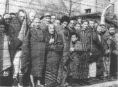 Auschwitz1945.jpg