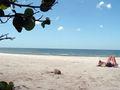 Plage de Floride 427.jpg