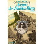 Avenue-des-Diables-Bleus.jpeg