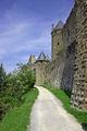 Cité médiévale de Carcassonne 206.jpg