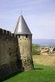 Tour de la cité médiévale 201.jpg