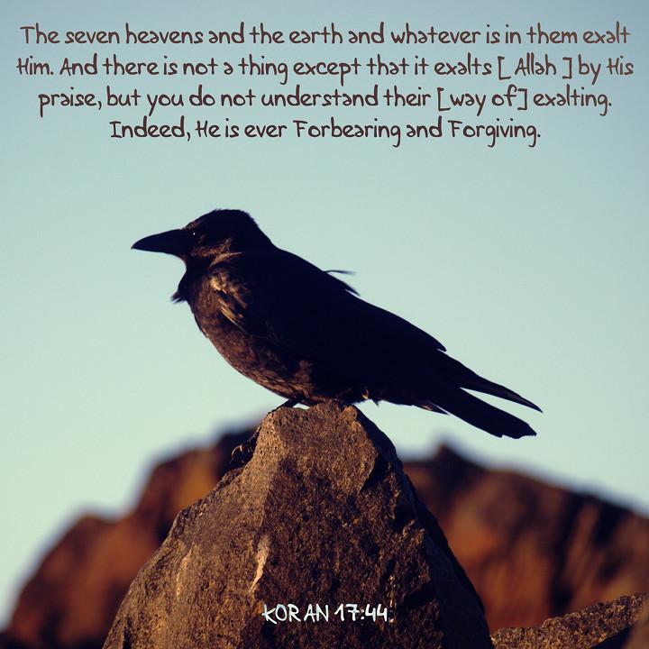 Koran 17:44