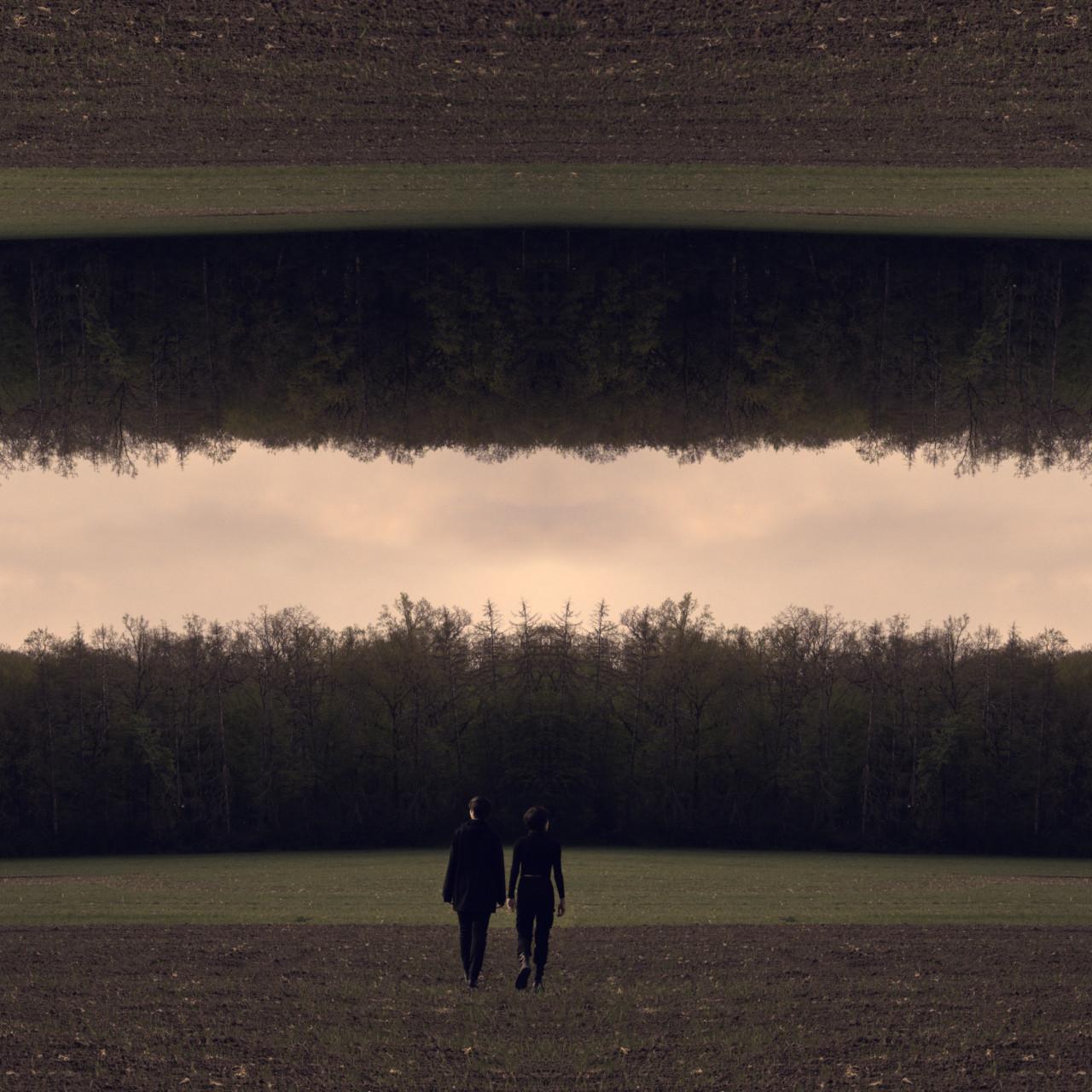 Non Euclidian Forest IV