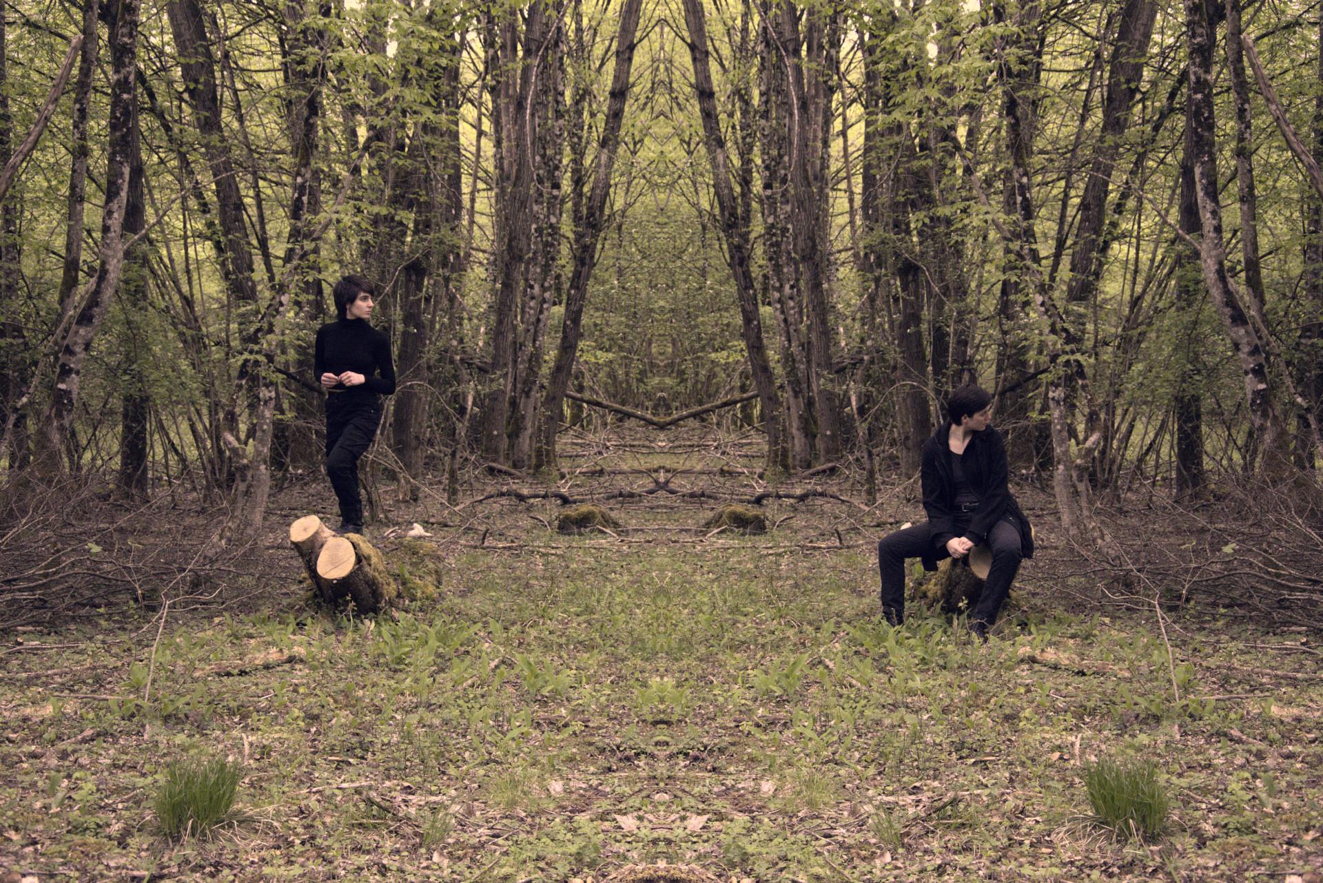 Non Euclidian Forest V
