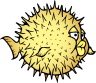 OpenBSD-logo.png