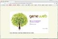 GeneWeb-Start.png