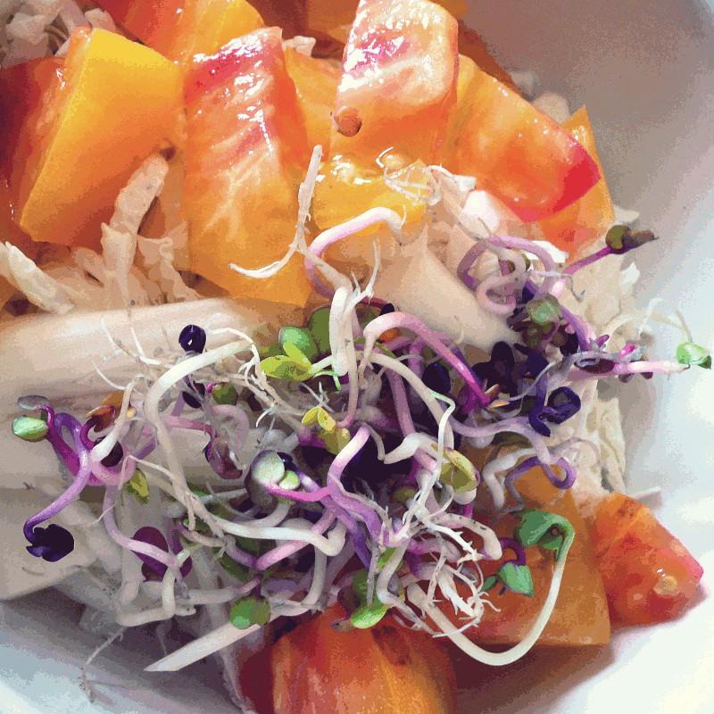 Gros plan sur une salade de tomates oranges et de chou blanc recouverte de graines germées blanches, vertes et violettes