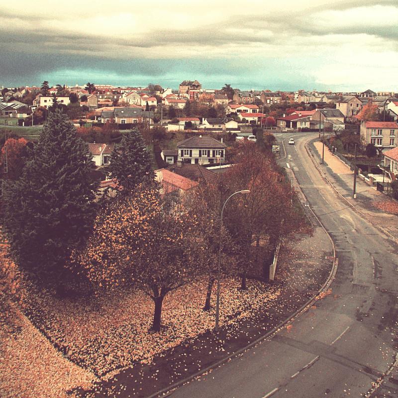En bas d'une colline plantée de maisons au toit rose, sous un couvercle de nuages sombres, la courbe d'une rue grise bordée de tilleuls aux feuilles jaunes et tombantes