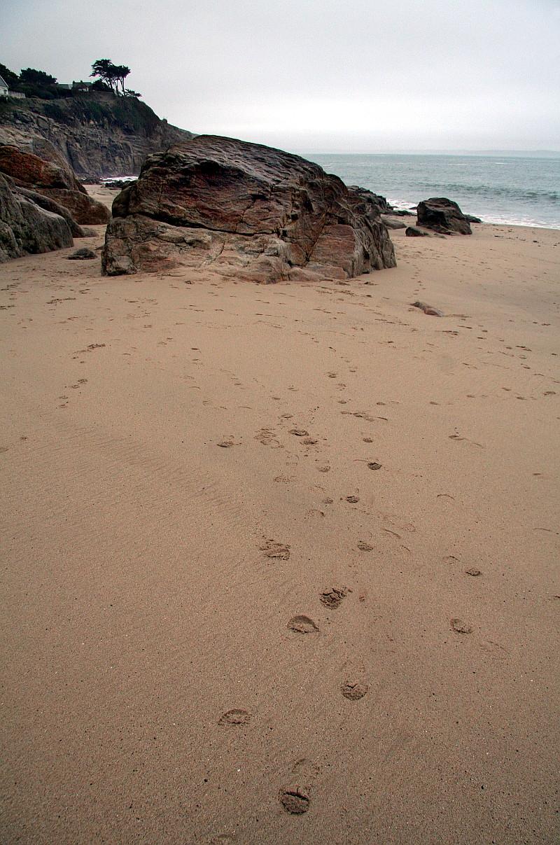 Empreintes de pas dans le sable blond autour du rocher central de Trégana, plage du Finistère
