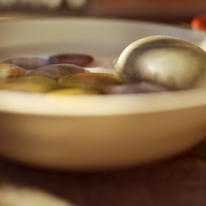Gros plan sur des cailloux dont seule la surface ronde est nette, ils sont bruns, ocres, gris ou mauves et disposés dans une assiette beige remplie d'eau