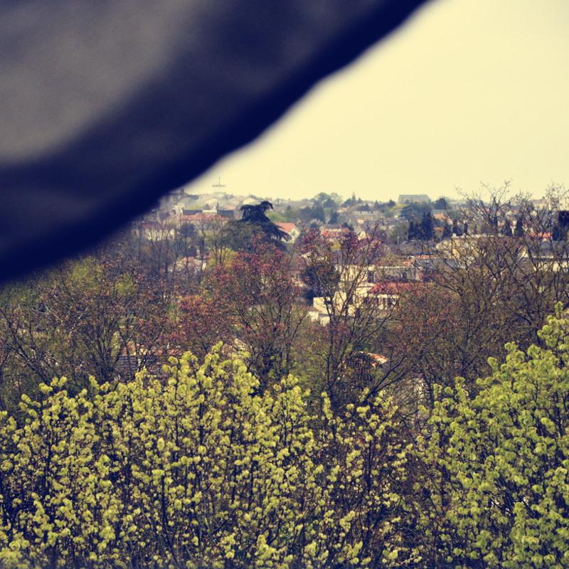 Sous le pli d'un rideau de toile beige, vue sur une rangée d'arbres aux feuilles encore froissées et d'un vert tendre, devant d'autres arbres perdant leurs fleurs mauves et des toits de maison entourés de jardins