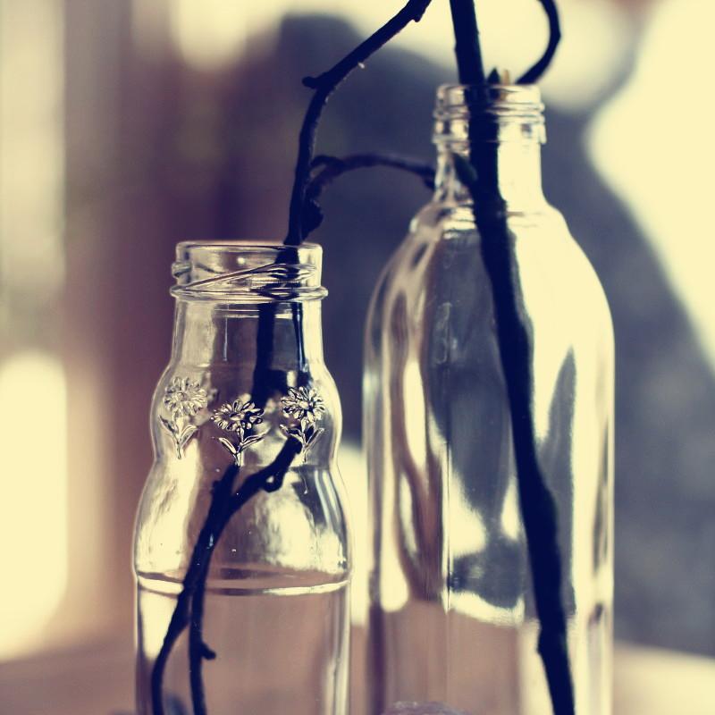 Gros plan sur le haut des vases en verre qui sont d'anciennes bouteilles de jus de fruits dans lesquelles sont placés des branches sombres