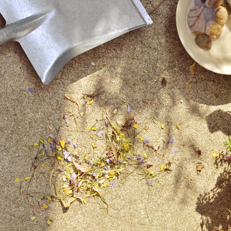 Sur le béton du sol du balcon, une pelle en métal, une assiette en grès clair remplie d'eau et de galets, et au milieu un tas fraîchement balayé de pétales multicolores