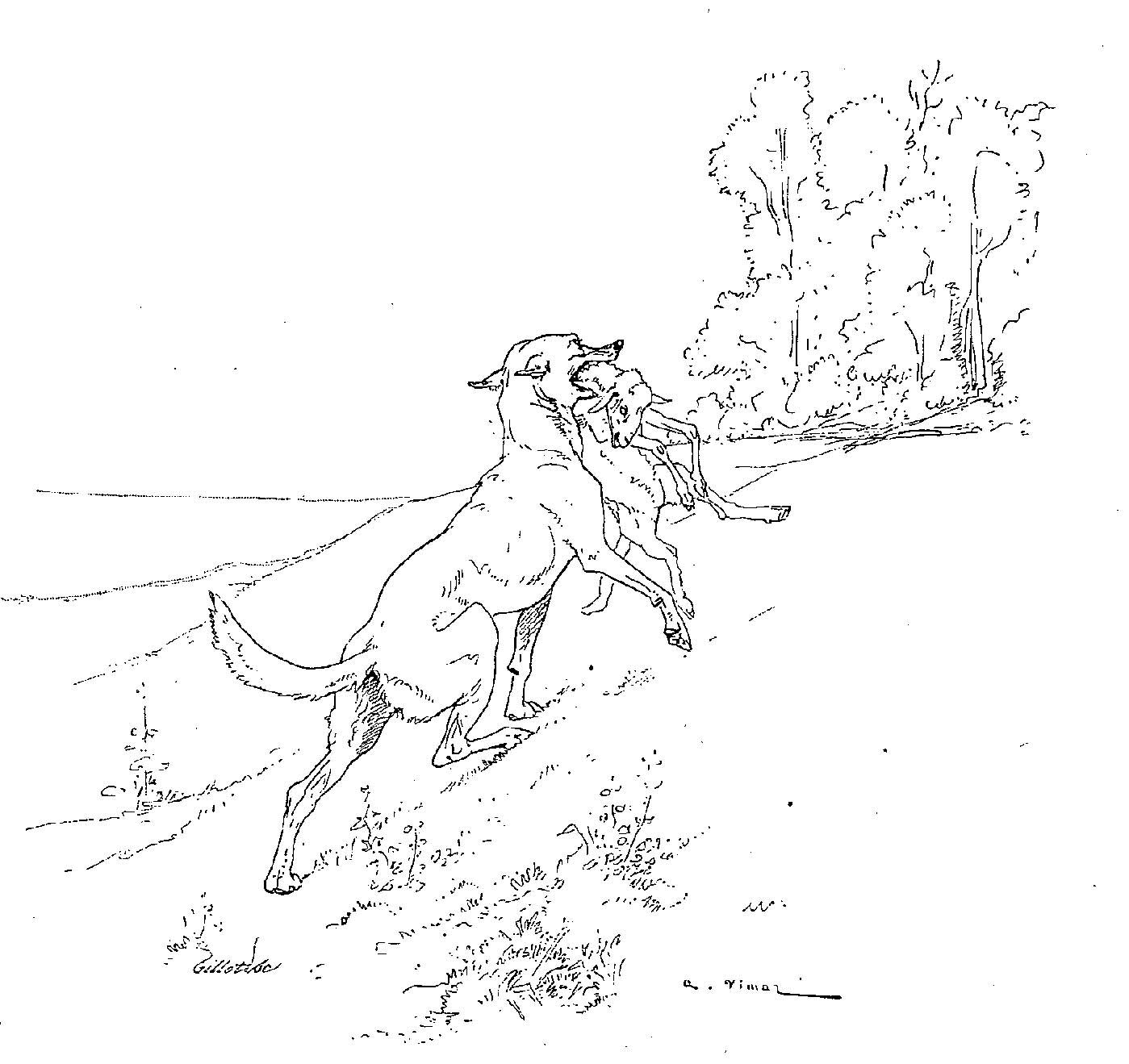 Index Of Leda Illustration Fable