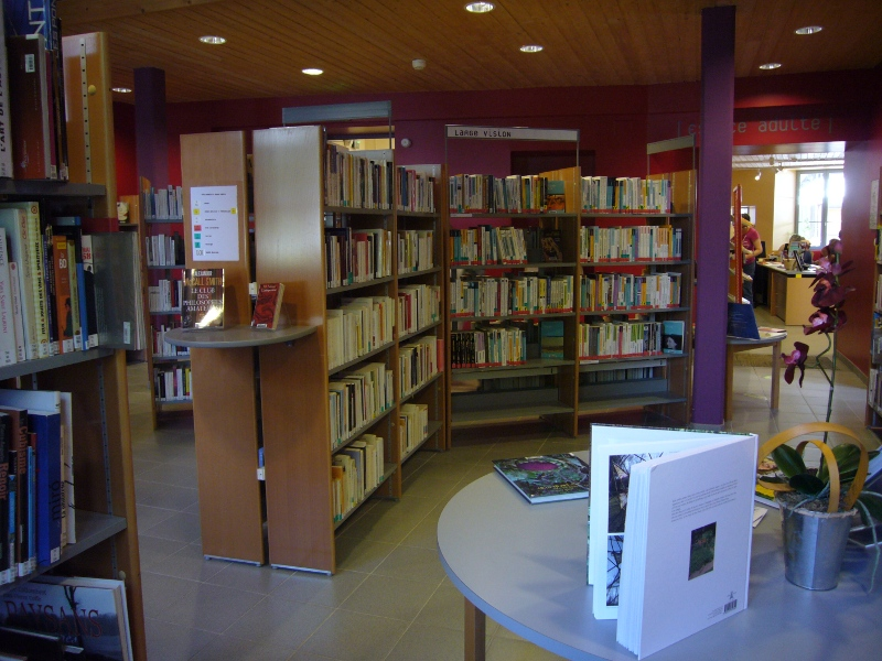 Bibliothèque de Besse - livres adultes