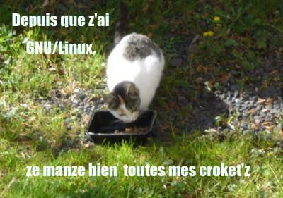 GNU/Linux, lolliz, croquettes