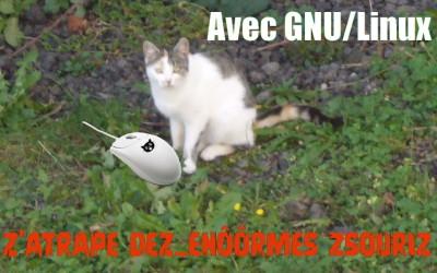 Lolliz, zsouriz, GNU/Linux