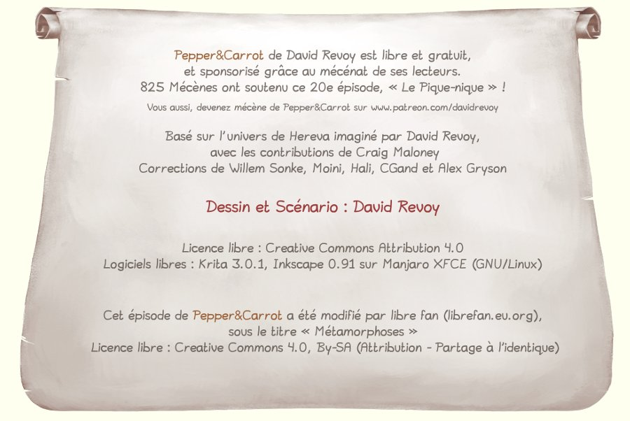 Pepper&Carrot_David-Revoy_E20P07mod