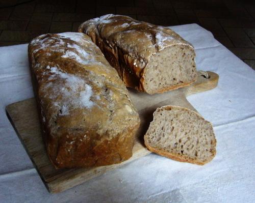 pain cuit au four