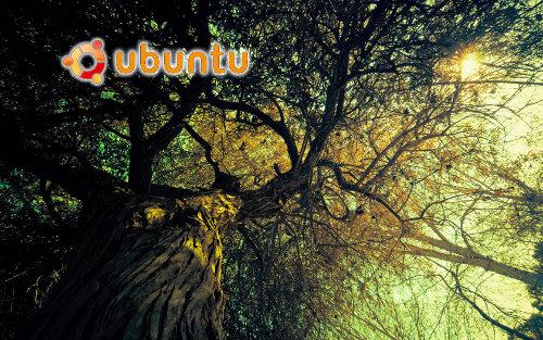image avec logo Ubuntu