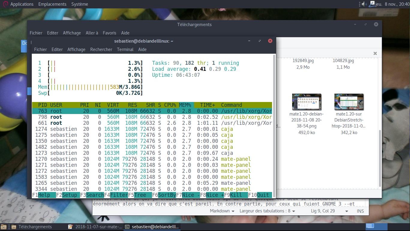 mate1.20-sur DebianStretch-htop